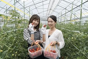 杤本農園(下呂温泉郷公式アプリ)