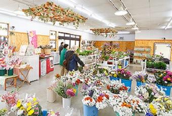 道の駅しちのへ 花卉展示館(七戸町)